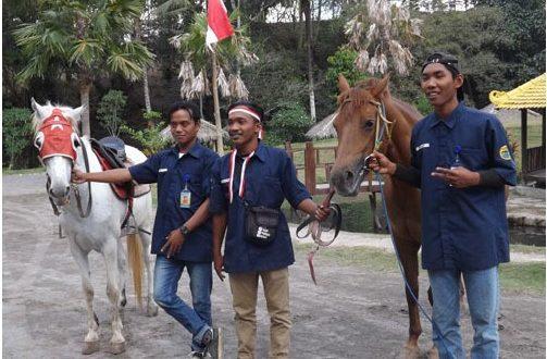 Pasukan Berkuda & 35 Satwa Ikut Merdeka di Halaman Parkir Jogja Exotarium 2018